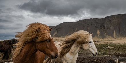 Islanda un Viaggio attraverso il ghiaccio